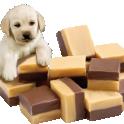 Собачка с шоколадом